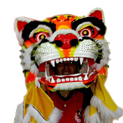Tiger_Dance_1